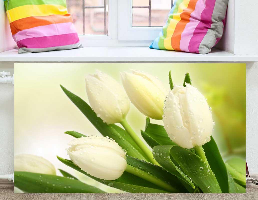 Что за цветок водохлеб